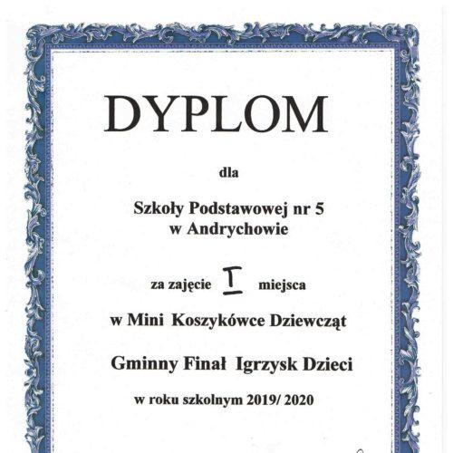 Dyplom - koszykówka 001