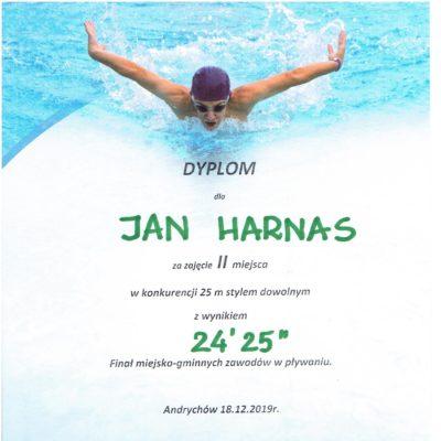 dyplom pływanie 2 001